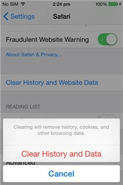delete search history on iphone