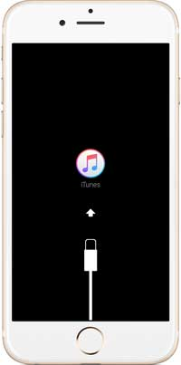 enable recovery mode to fix iphone white screen of death