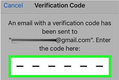 enter the verification code to change apple id