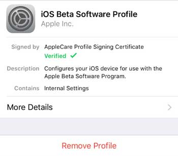 remove ios beta software profile