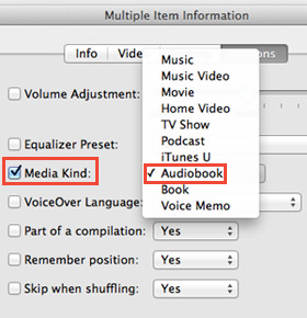 convert itunes audiobooks to mp3
