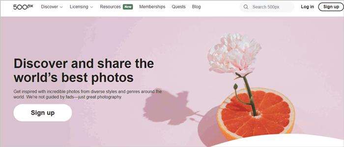 google photos alternative - 500px