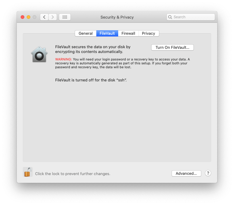 go to mac system preferences filevault